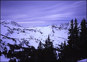 A view from Alta Ski Area