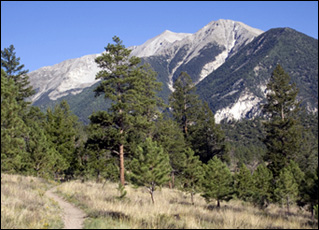 In the shadows of Mt. Princeton in central Colorado